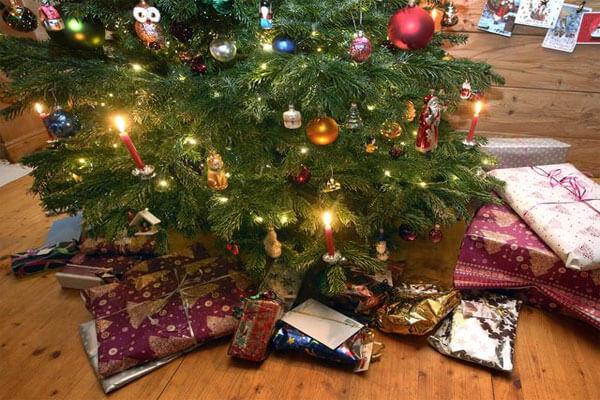 Gửi cây thông Noel đi Mỹ